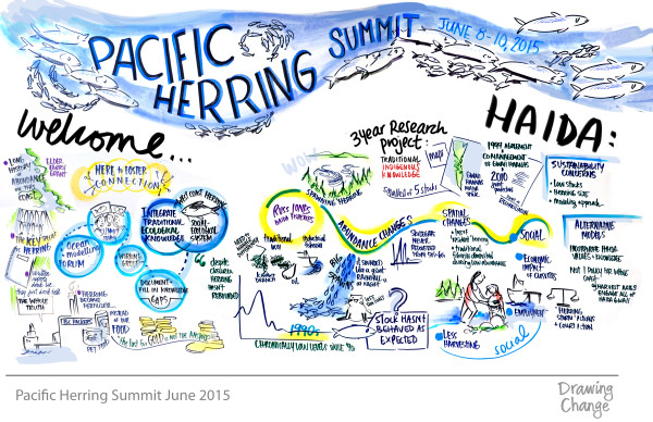OMF pacific herring forum traditional ecological knowledge research graphic recording