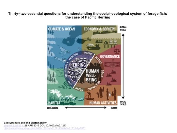 pacific herring social ecological model
