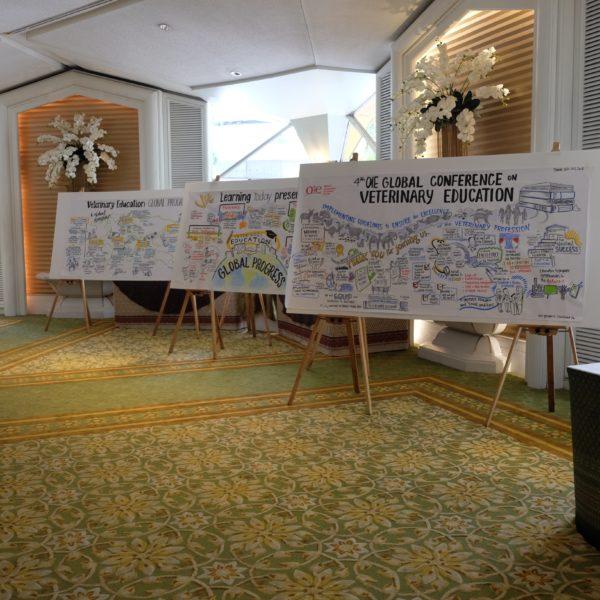 OIE Conference on Veterinarian Education graphic recording sam bradd