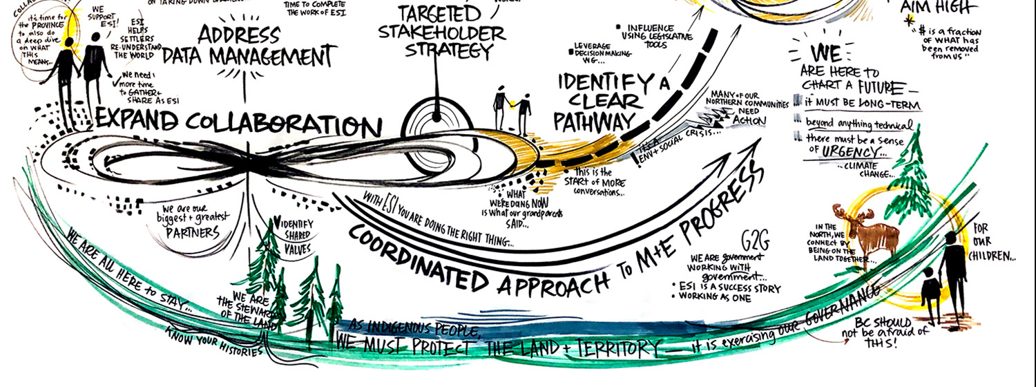 graphic recording environmental stewardship drawing change